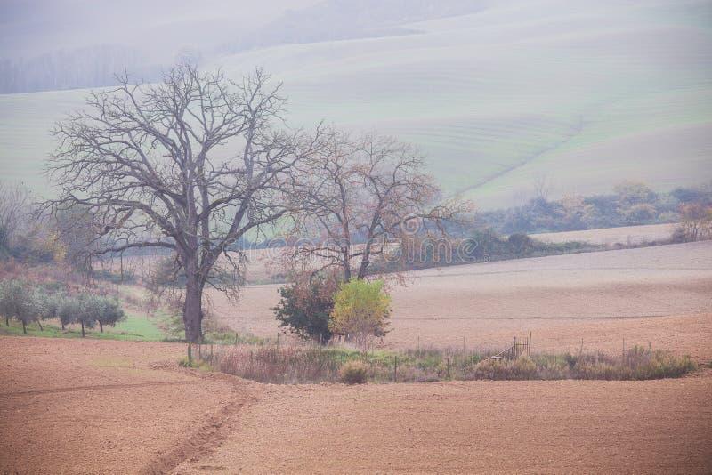 Horizontal rural de campagne photos stock