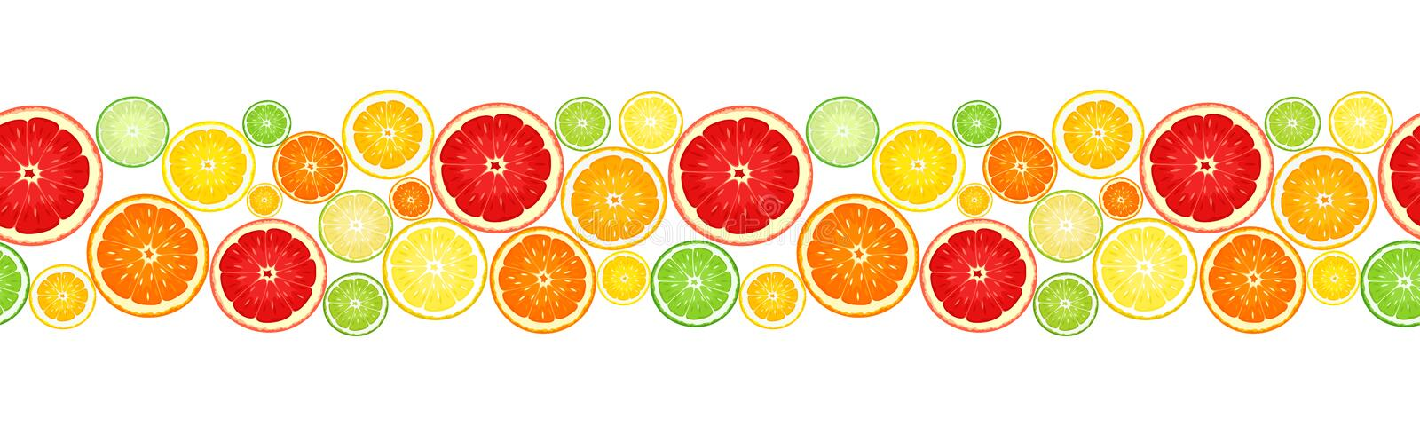 Horizontal seamless background with citrus fruits. Vector illustration. Vector horizontal seamless background with slices of various citrus fruits on white royalty free illustration