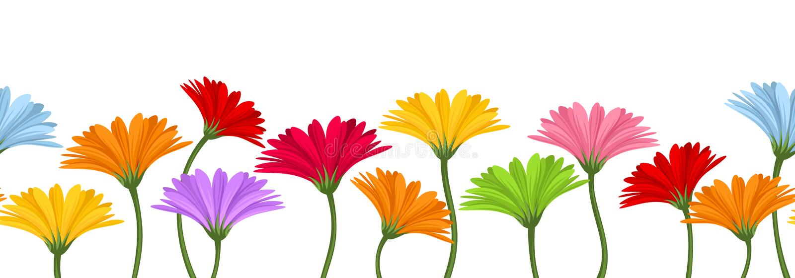 Horizontal seamless background with colorful gerbera flowers. Vector illustration. stock illustration