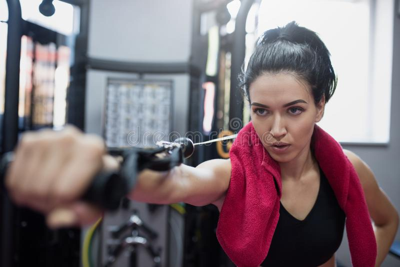Horizontal shot of powerful Caucasian serious brunette woman is doing exercises in the gym. Sporty woman exercising with barbell stock images