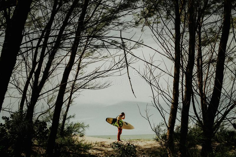 Horizontal shot through the trees of a man standing on a beach while holding a surfing board. A horizontal shot through the trees of a man standing on a beach stock photo
