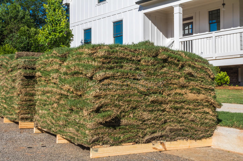 Horizontal Sod Closeup with House royalty free stock photography