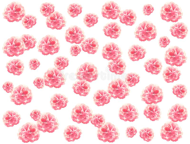 Horizontal subdued dusty background of repeating chaotically light pink lush watercolor flowers on a white background stock illustration
