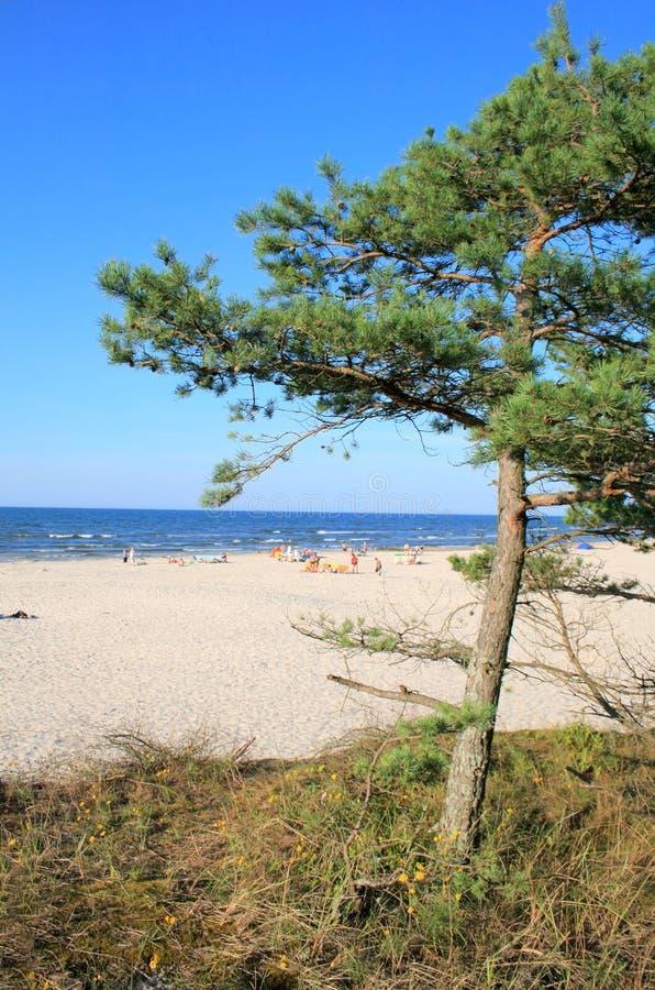 Horizontal sur la plage image libre de droits