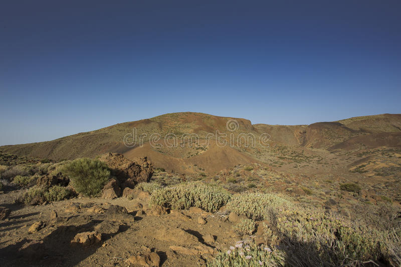 horizontal Tenerife photos libres de droits