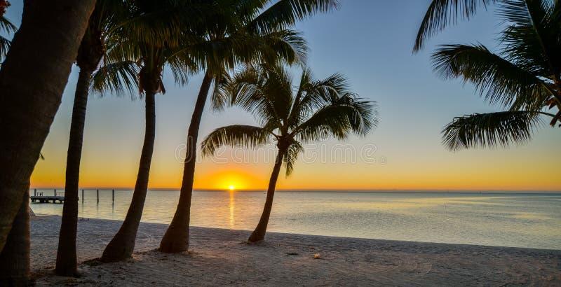 Horizontal tropical photos stock