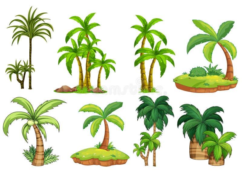 Horizontal tropical illustration libre de droits
