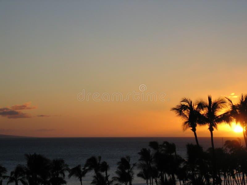 Horizontal tropical de coucher du soleil images stock