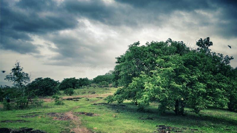 Horizontal vert photo stock