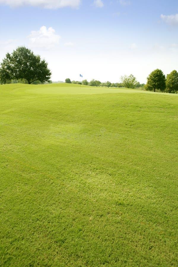 Horizontal vert d'herbe de golf dans le Texas photographie stock