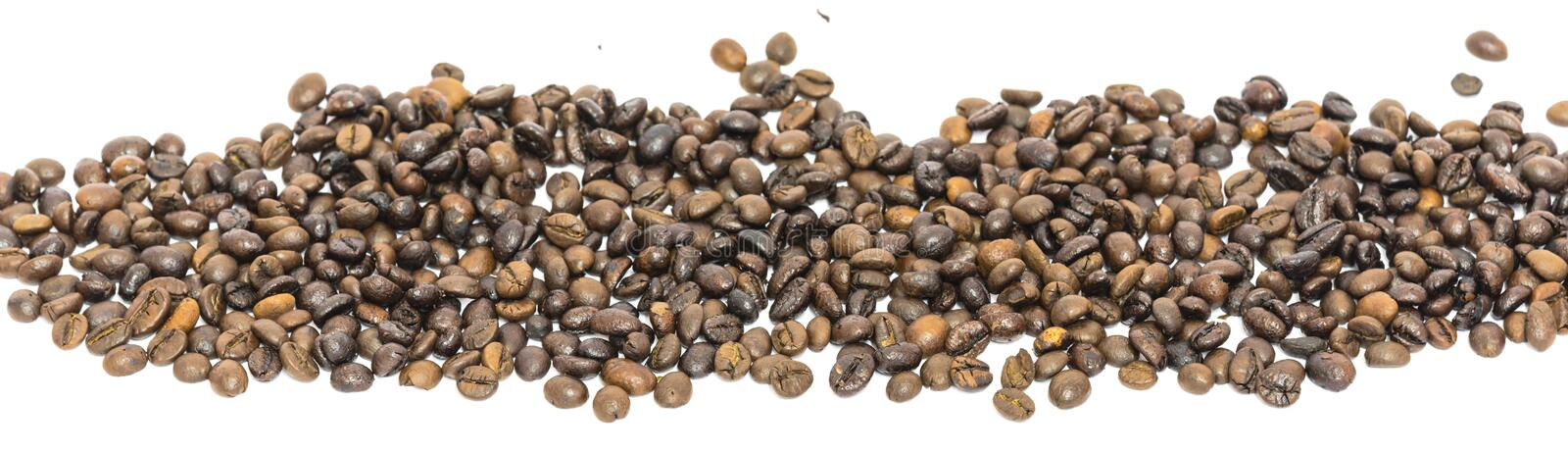 Horizontal view heap of roasted Vietnamese robusta coffee beans isolated. Panorama heap of roasted Vietnamese robusta coffee beans isolated on white background stock images