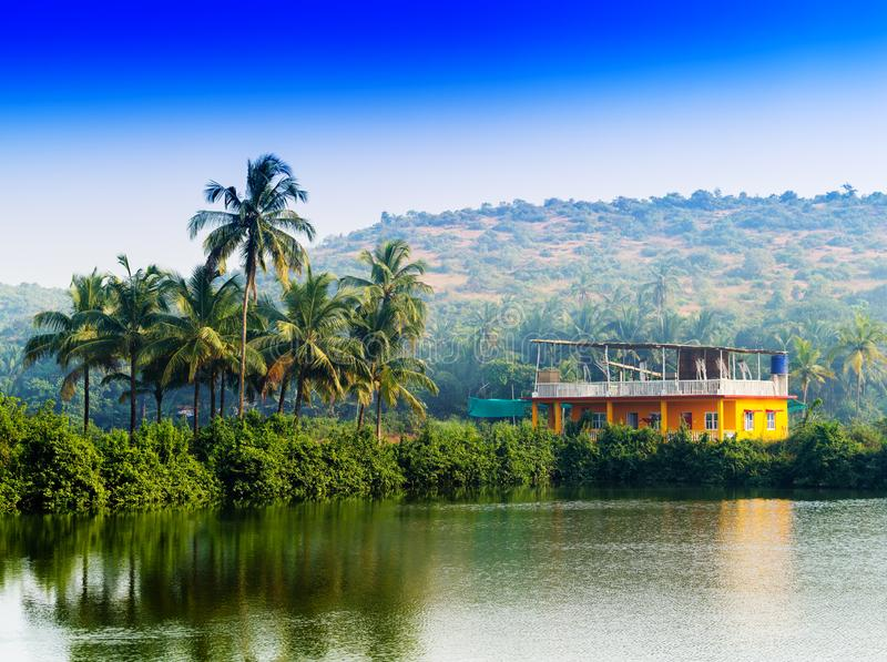 Horizontal vivid Indian house palms with river reflection backgr royalty free stock images