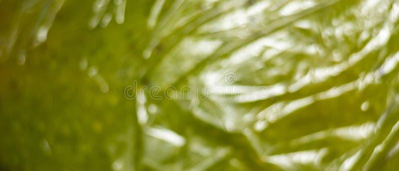 Horizontale achtergrond van groen fruit in de verpakking van film royalty-vrije stock foto's
