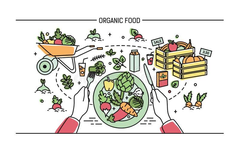 Horizontale banner met natuurvoeding Samenstelling met groenten op plaat, verschillende verse producten, groen, fruit royalty-vrije illustratie