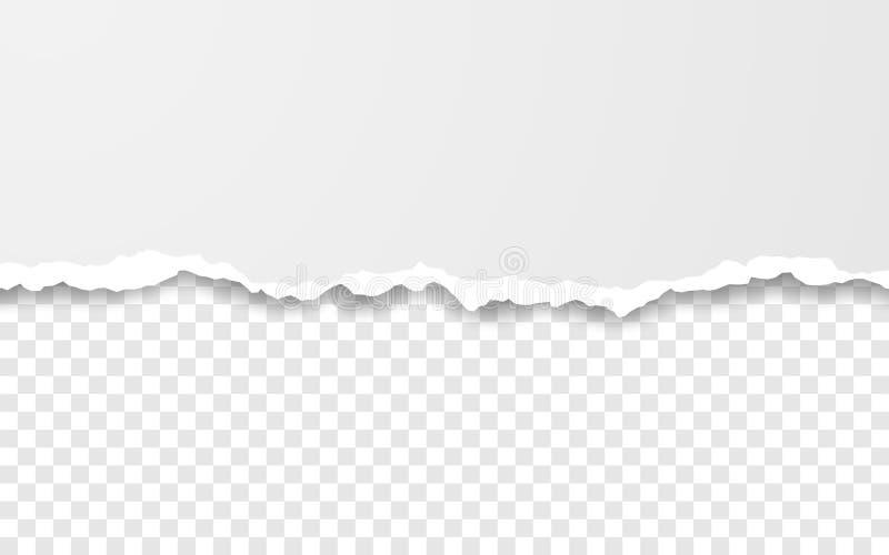 Horizontale heftige Papierkante Ripped quadrierte horizontale Wei?buchstreifen Auch im corel abgehobenen Betrag stock abbildung