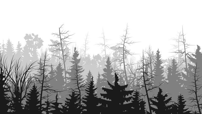 Horizontale illustraties van naaldhout. stock illustratie