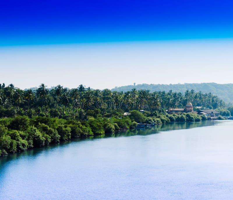 Horizontale indische Dschungelstrandlandschaft stockbild