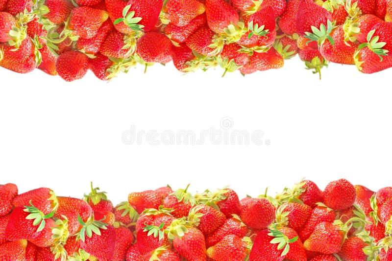 Horizontale Niveaus oder Rahmen mit neuem rotem Sommer trägt die Erdbeeren Früchte, die auf weißem Hintergrund lokalisiert werden lizenzfreies stockfoto