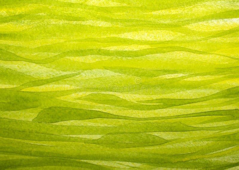 Horizontaler Frühlingsgrashintergrund gemalt mit Gouache lizenzfreie abbildung