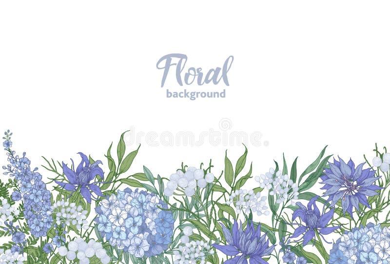 Horizontaler mit Blumenhintergrund verziert mit Garten-Blumenunten wachsen des Frühlinges blühendem Rand auf weißem Hintergrund vektor abbildung