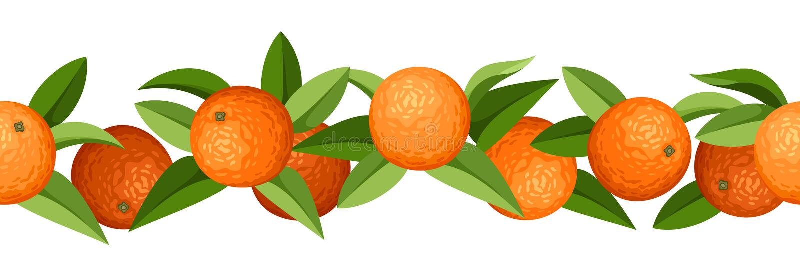 Horizontaler nahtloser Hintergrund mit Orangen. vektor abbildung
