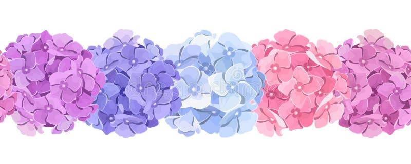 Horizontaler nahtloser Hintergrund mit rosa, blauer und purpurroter Hortensie blüht Auch im corel abgehobenen Betrag vektor abbildung