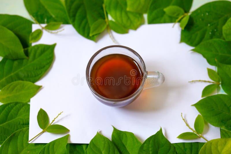 Horizontales Bild mit Herbst, grünen Blättern und einer Schale schwarzem Tee auf einem weißen Hintergrund stockfoto