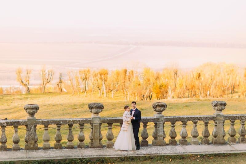 Horizontales Panorama mit den Jungvermählten, die den Geist der Frühlingsfelder und -waldes genießen stockbilder