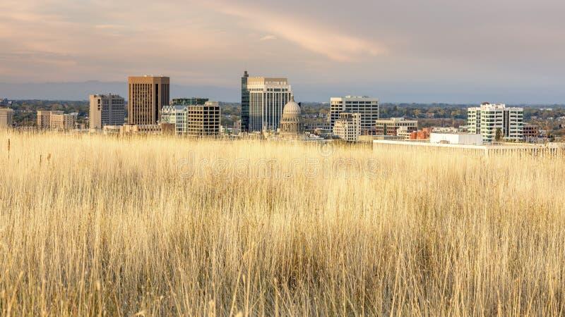 Horizonte único de Boise Idaho con las hierbas imágenes de archivo libres de regalías