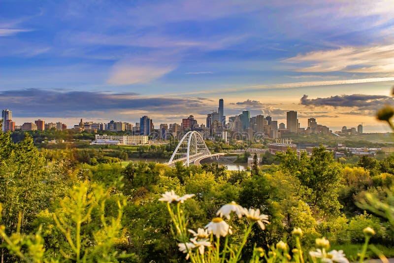 Horizonte céntrico panorámico de Edmonton de la mañana imagen de archivo