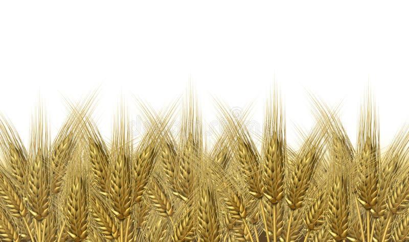 Horizonte da colheita do trigo ilustração royalty free