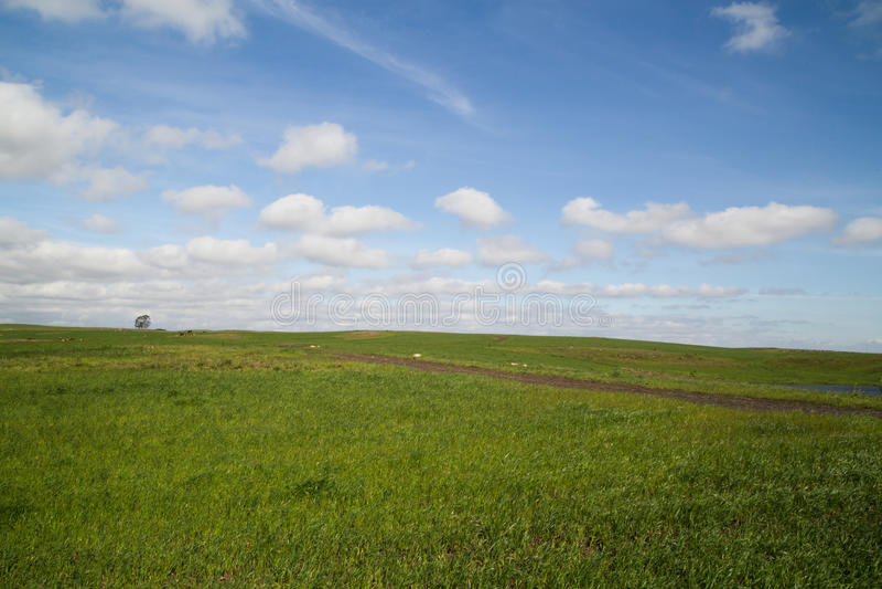 Horizonte da exploração agrícola imagens de stock royalty free