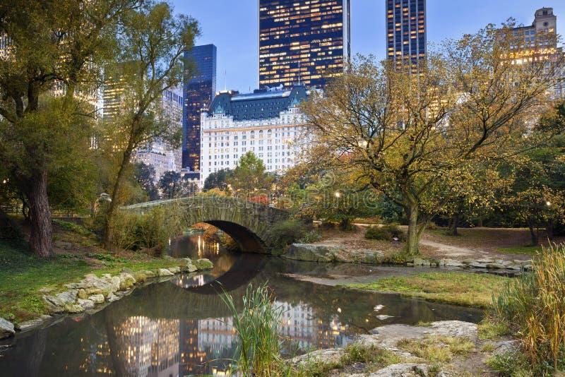 Horizonte de Central Park y de Manhattan. foto de archivo libre de regalías