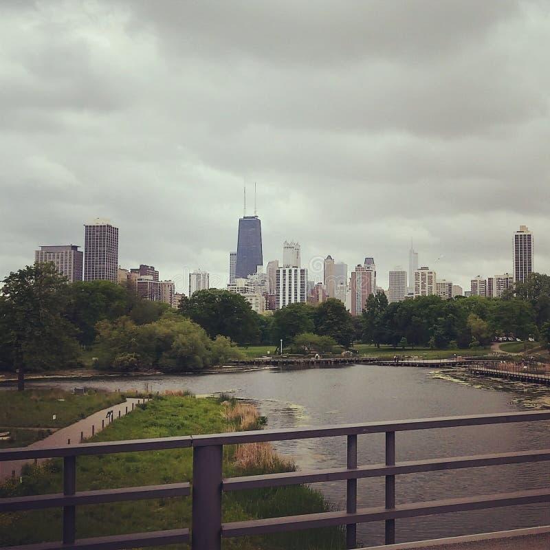 Horizonte de Chicago de Lincoln Park Zoo foto de archivo libre de regalías