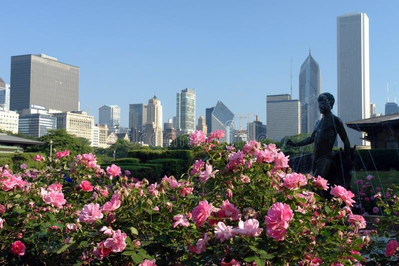 Horizonte de Chicago en la mañana foto de archivo libre de regalías