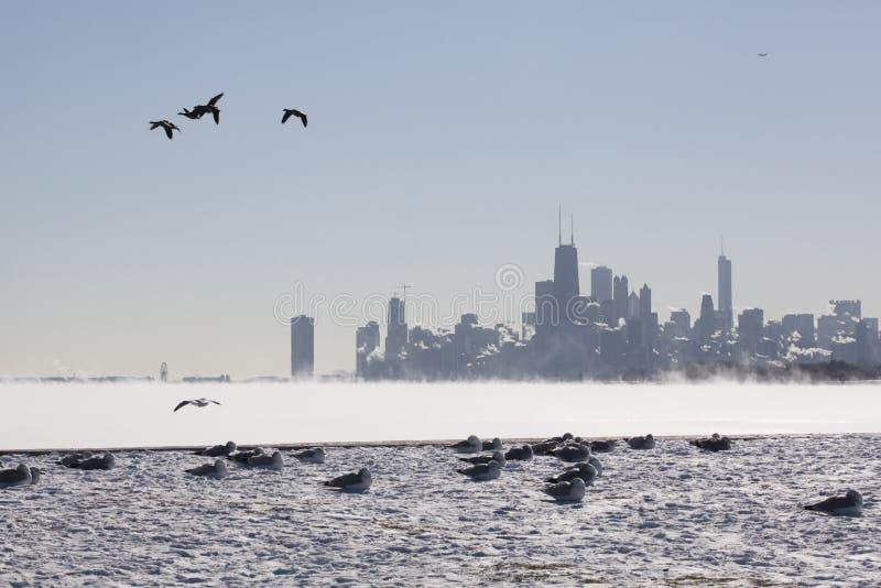 Horizonte de Chicago en la orilla del lago en un día de invierno bajo cero imagen de archivo libre de regalías