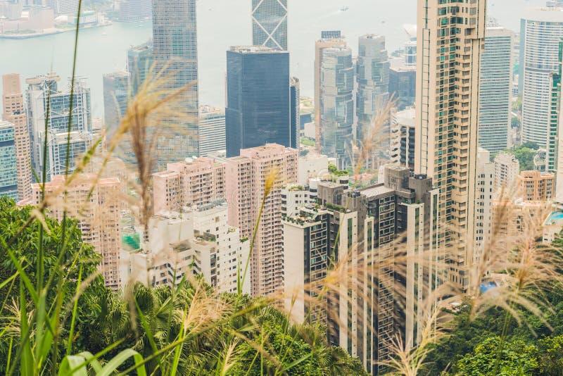 Horizonte de Hong-Kong Visión desde el pico de Victoria fotografía de archivo libre de regalías