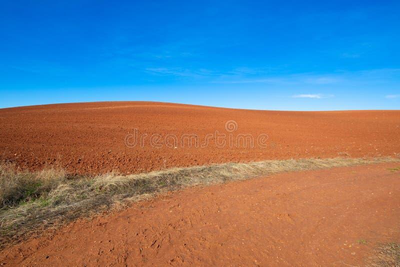 Horizonte de la colina marrón del campo de la tierra y del cielo azul imagen de archivo