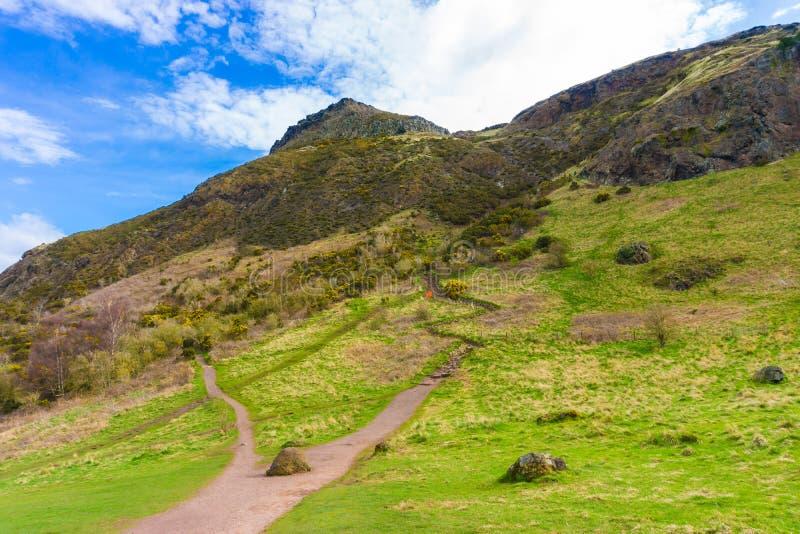 Horizonte de la hierba verde de la montaña de Edimburgo foto de archivo libre de regalías