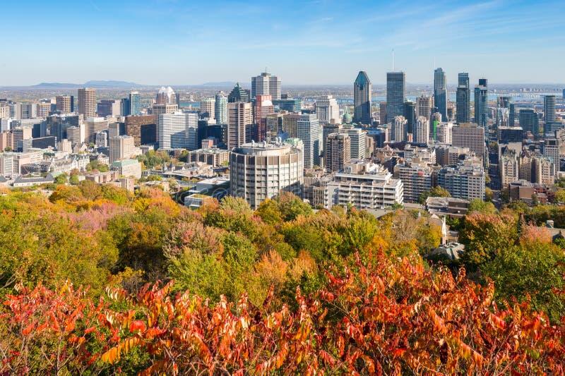Horizonte de Montreal en otoño fotos de archivo