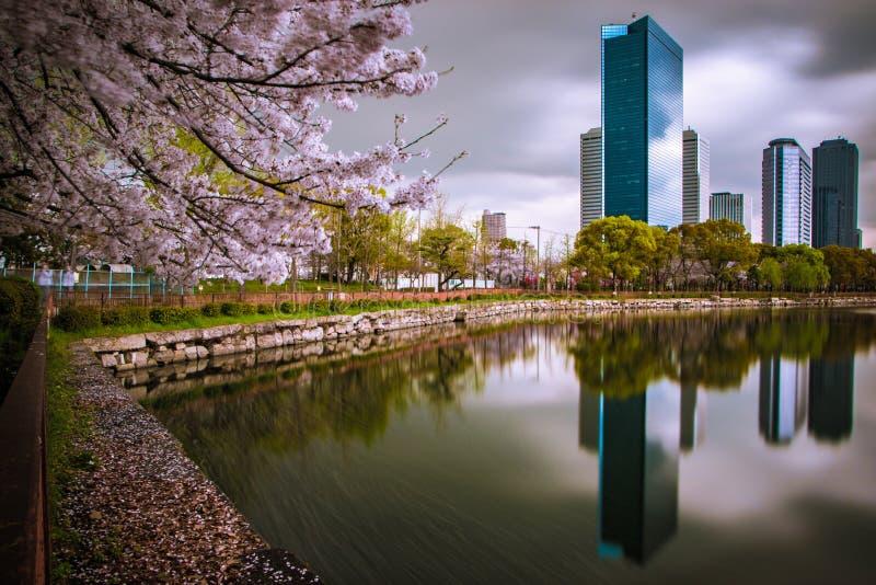 Horizonte de Osaka imagen de archivo