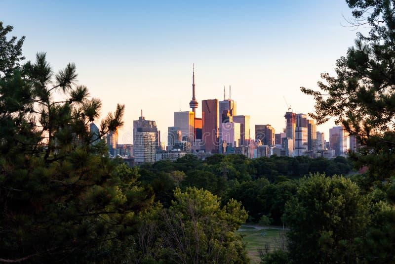 Horizonte del centro de ciudad de Toronto durante la igualación de la puesta del sol de oro de la hora vista del este del parque  foto de archivo