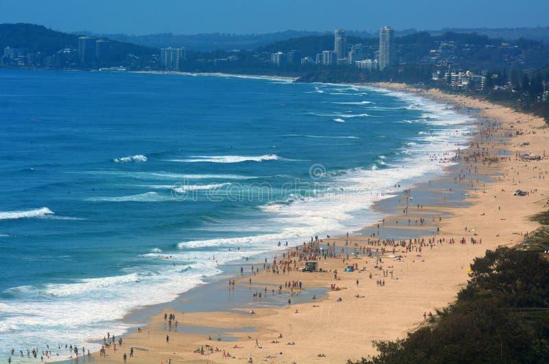 Horizonte del paraíso de las personas que practica surf - Queensland Australia fotografía de archivo libre de regalías