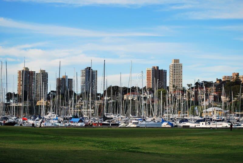 Horizonte del parque de la bahía de Rushcutters, Sydney, Australia fotografía de archivo