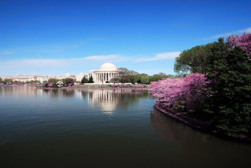 Horizonte del Washington DC imagen de archivo libre de regalías