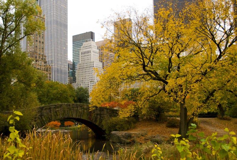 Horizonte y Central Park de New York City en otoño fotos de archivo libres de regalías
