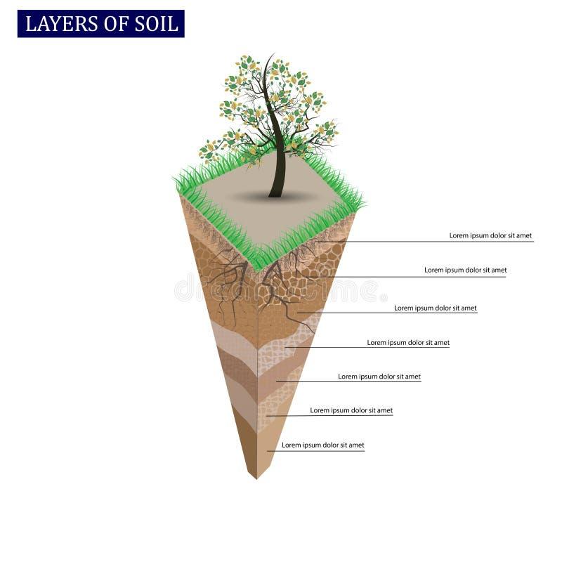 Horizontes del perfil de suelo y de suelo Trozo de tierra con las raíces de la hierba verde y de la planta libre illustration