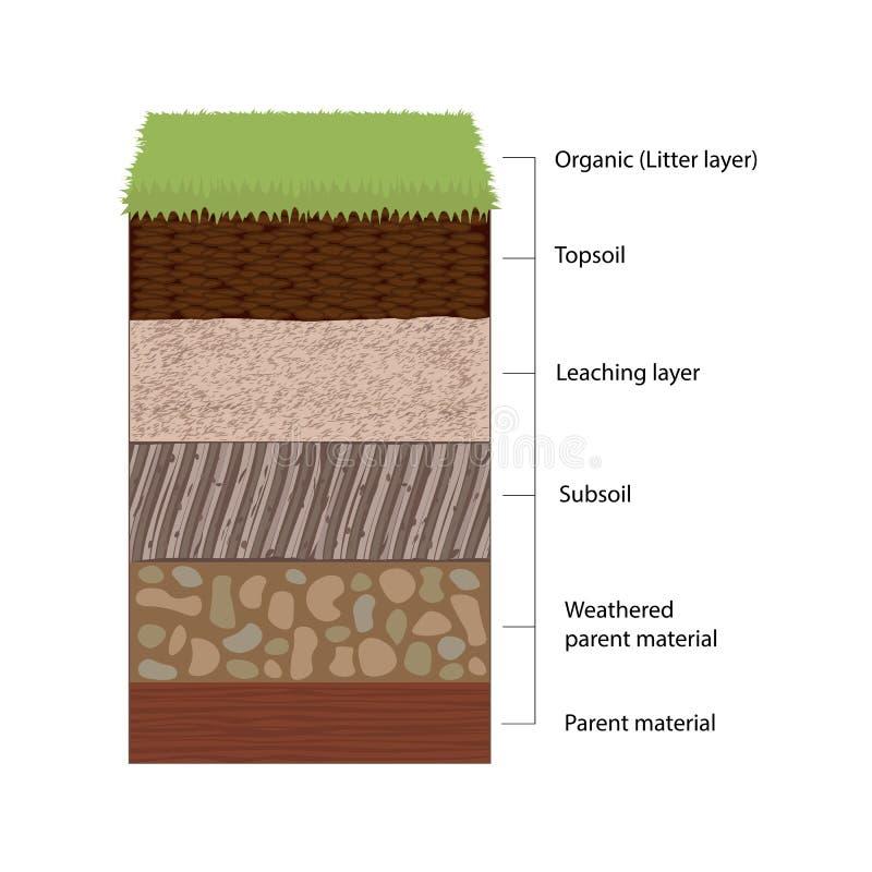 Horizontes y capas de suelo ilustración del vector