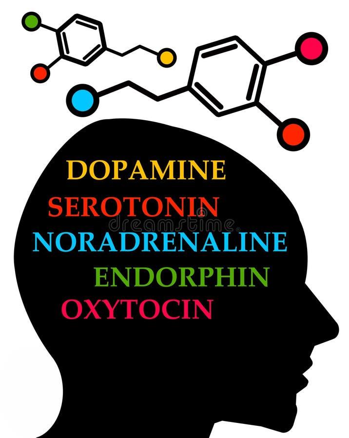 Hormonas ilustração stock