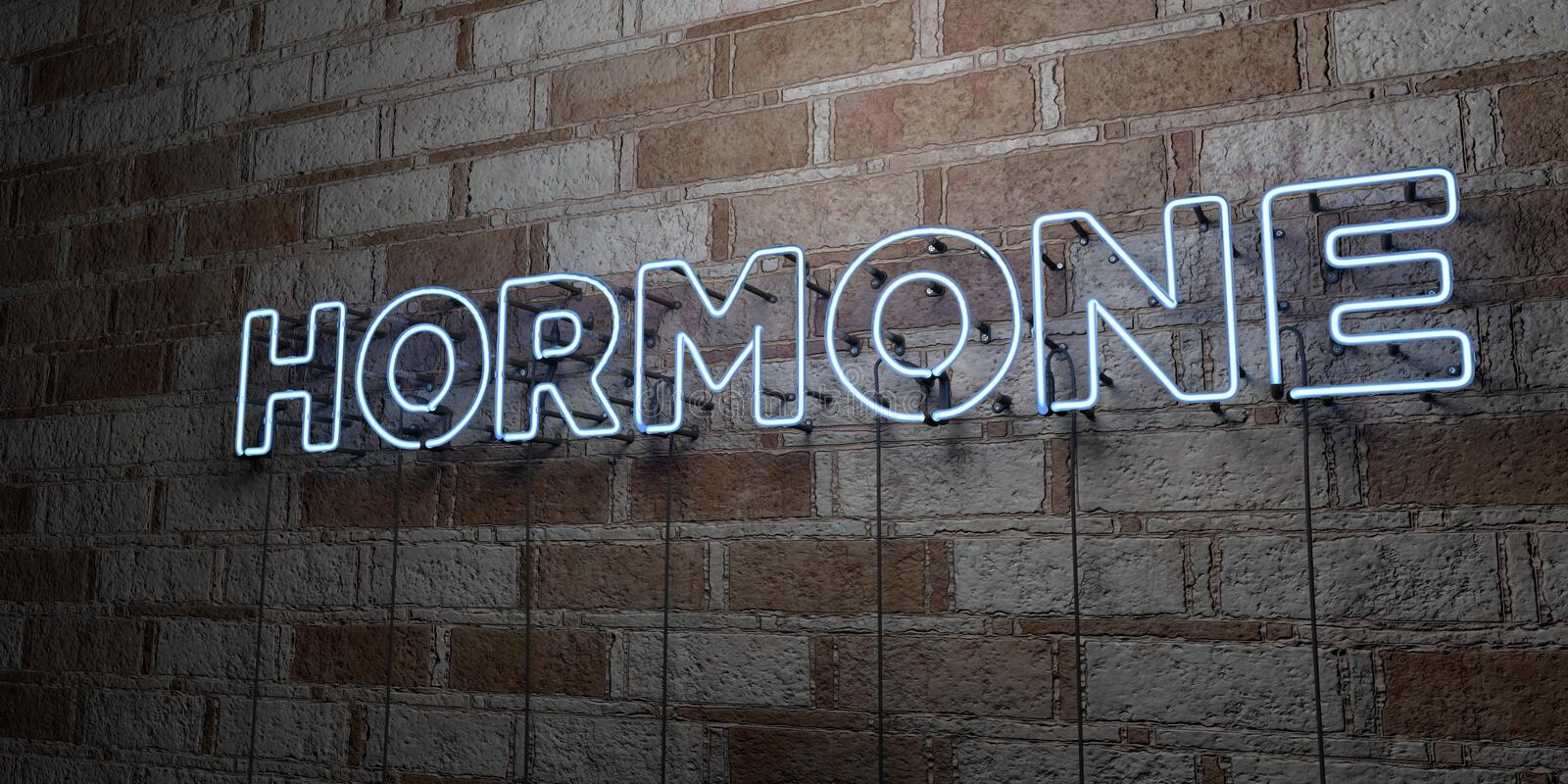 HORMONE - Glowing Neon Sign on stonework wall - 3D rendered royalty free stock illustration. Can be used for online banner ads and direct mailers stock illustration